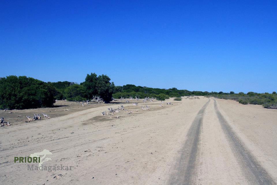 Sandpiste in Madagaskar. Die meisten Straßen sind nicht geteert.