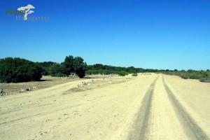 Piste Sand Madagaskar Westen