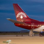 Logo Air Madagascar Ravenala Baum der Reisenden