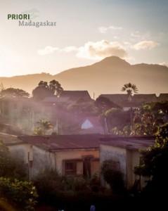 Ambalavao Baum des Reisenden Sonnenuntergang Madagaskar