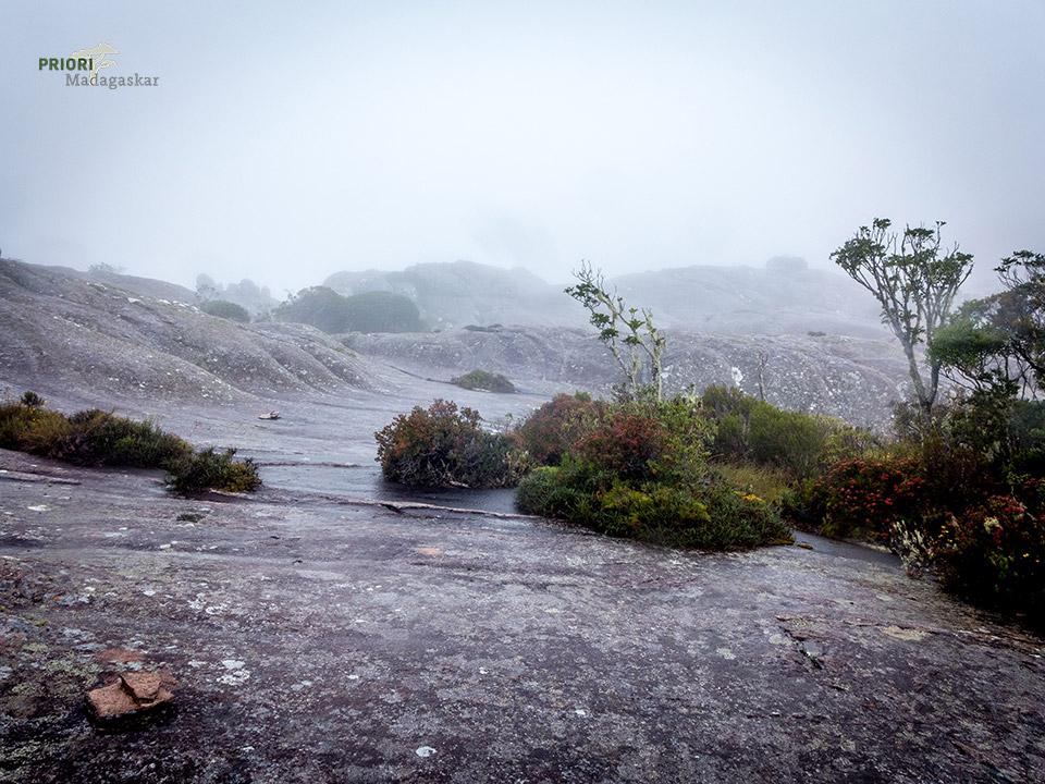 Andringitra-Nationalpark-Mondebene-Madagaskar-Stein