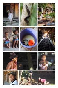 Madagaskar Reise Vanille Norden