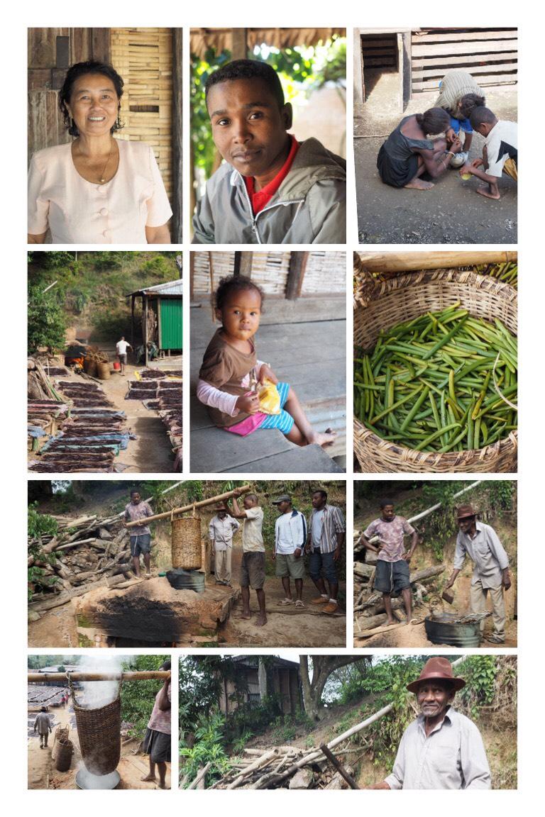 Reise durch Madagaskars Norden – Vanille, Schlamm und Ramsamsam