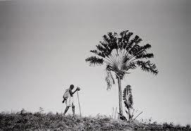 Fotografie von Pierrot Men Madagaskar