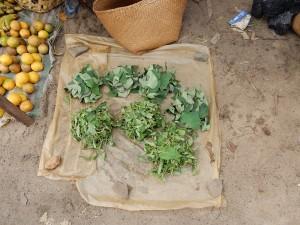 Heilpflanzen Madagaskar PRIORI Reisen Markt