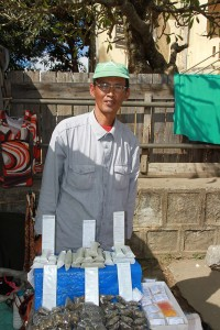 Heilpflanzen_Madagaskar-PRIORI-Reisen