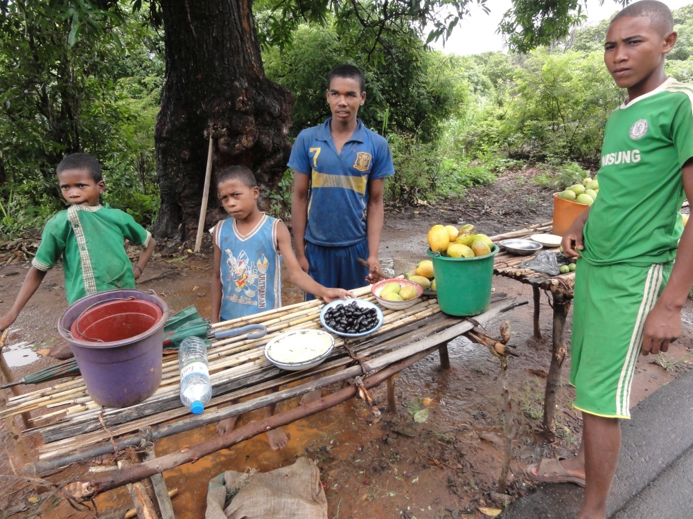 Rotra: Diabetes-Heilmittel aus Madagaskar