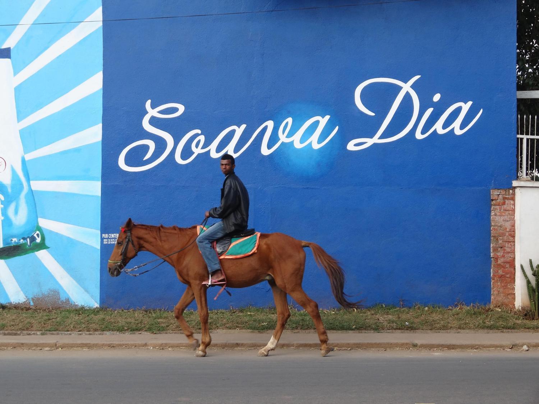 Reiten in Madagaskar - braunes Pferd vor blauer Reklametafel mit madagassischem Reiter