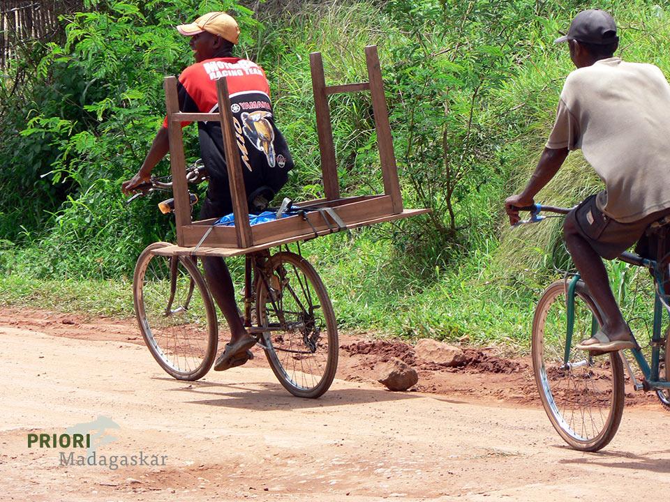 Mit dem Fahrrad unterwegs in SAVA